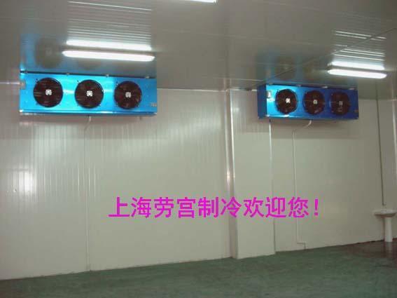 劳宫品牌冷风机DL125