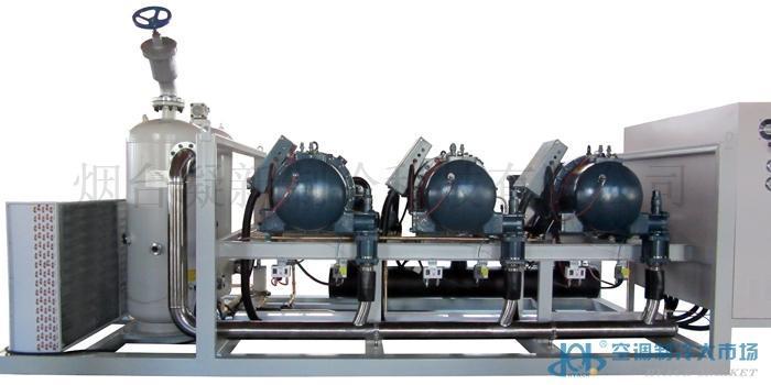 复盛三并联螺杆制冷机组/速冻并联机组