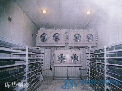 速冻冷库设计与建造