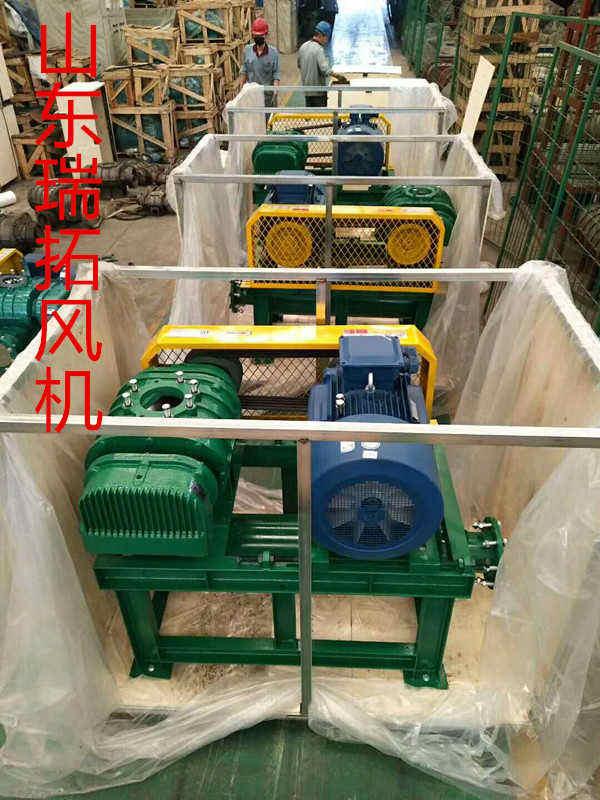 特殊气体沼气输送罗茨鼓风机厂家直销 品质保证