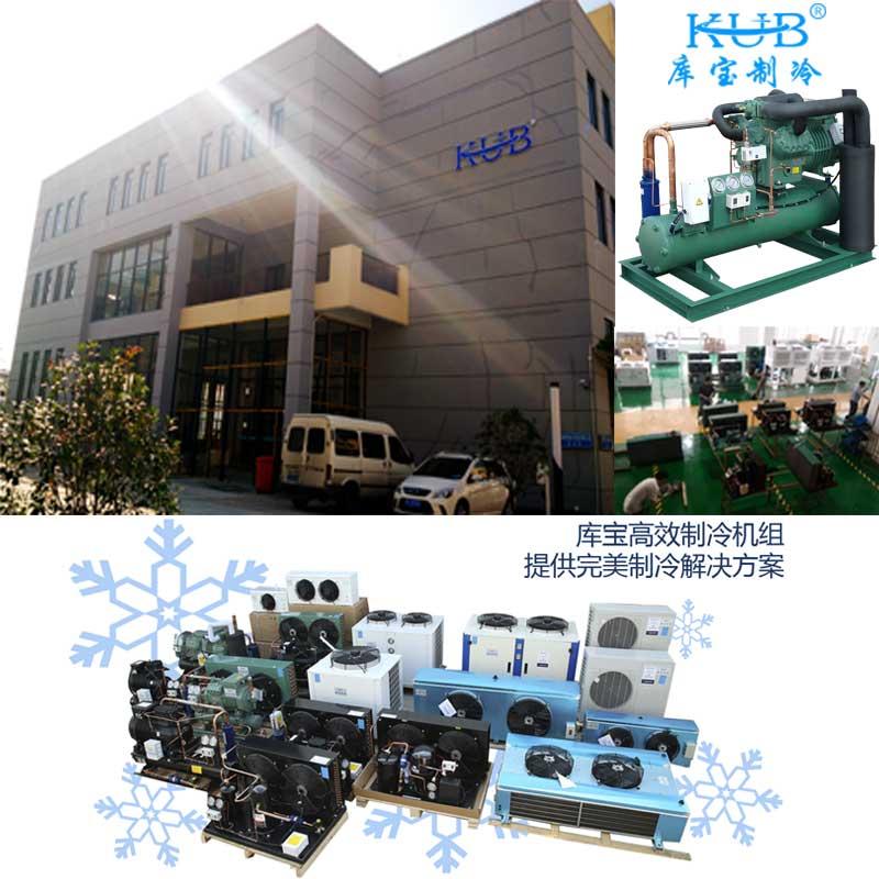 100立方-18℃冷冻库谷轮风冷机组+DD140冷风机等配件套