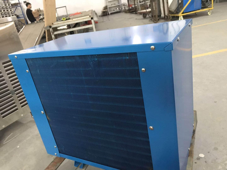 海鲜制冷机 海鲜池冰水机 冷暖海鲜机 鱼池制冷机