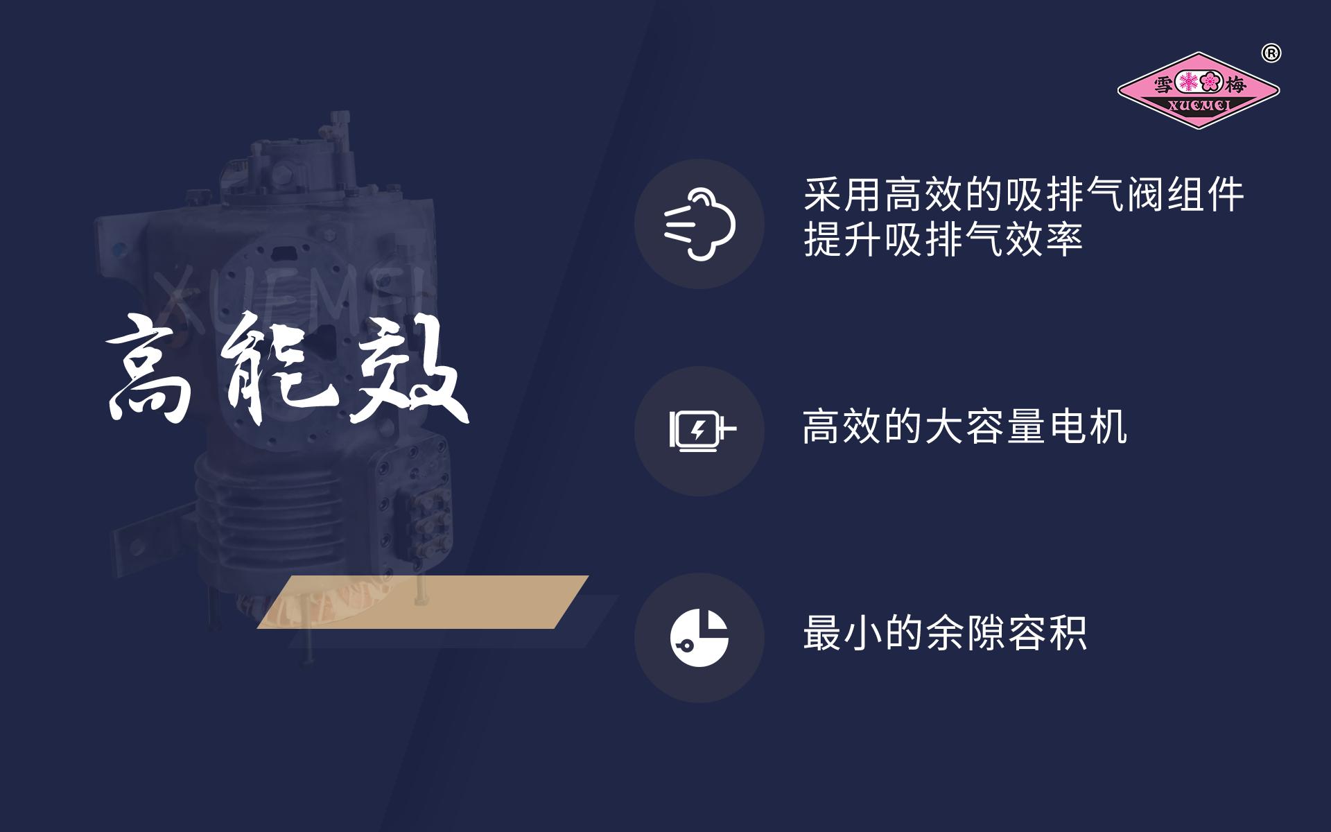 雪梅半封闭活塞BV  BW系列式制冷压缩机河南省总经销