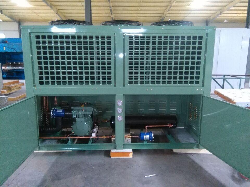 比泽尔V型活塞箱式一体机 冷冻保鲜制冷设备