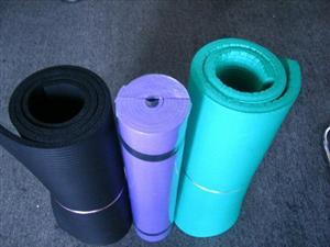 野营垫 瑜伽垫 健身垫
