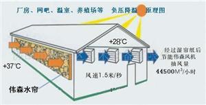 水帘通风降温系统
