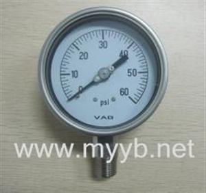 直径40-250mm全不锈钢压力表