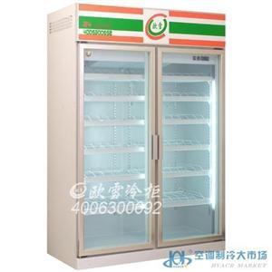 深圳双门冷冻陈列柜