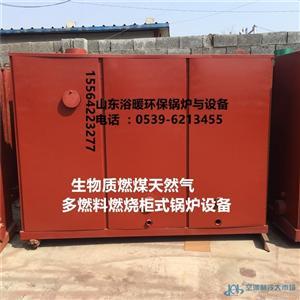 浴池供暖生物质颗粒天然气专用卧式生物质燃气两用锅炉
