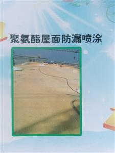 聚氨酯屋面防漏喷涂工程