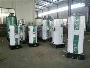 威海日照临汾运城枣庄临沂液化气蒸汽锅炉 蒸馒头豆制