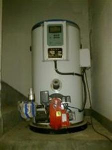 小型燃煤燃气蒸汽锅炉 液化气蒸汽锅炉厂家 蒸食用菌燃
