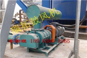 上海MVR蒸汽压缩机,20年老厂家罗茨蒸汽压缩机,包邮