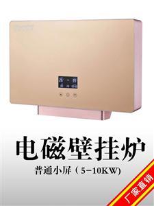 5KW-10KW供暖热水两用电磁壁挂炉