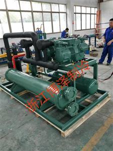 双并联机组杭州比泽尔 4YD-10.2 不含电控