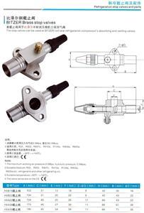 比泽尔机型(B型)系列阀门钢阀