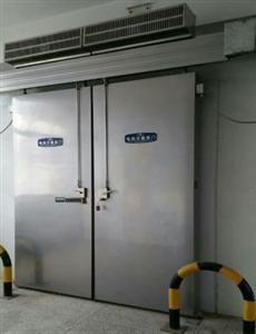 海门雪盾双扇电动平移冷库门