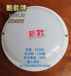 广州恒枫 LED冷库灯 30W