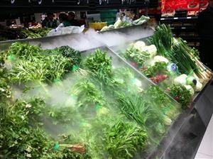 食品行业加湿器