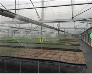 花卉行业加湿器