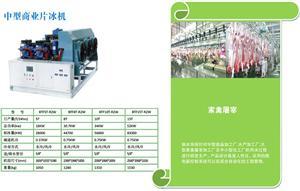 中型片冰机