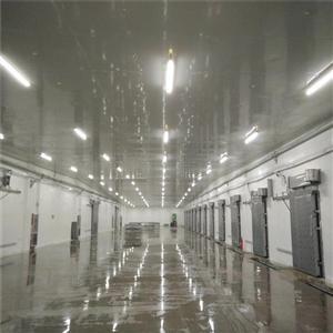 电动冷库门厂家定制  不锈钢平移保温门  冷库保温平移门