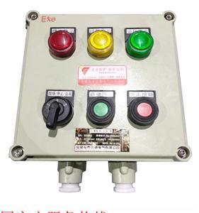 安防专用电气电工开关按钮防爆控制箱定制