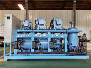 莱富康螺杆式制冷压缩机 低温二并联冷库冷冻冷藏制冷机组